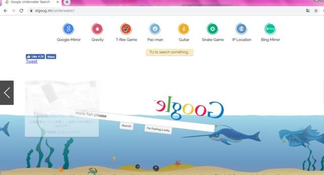 Googleの隠しコマンド-海