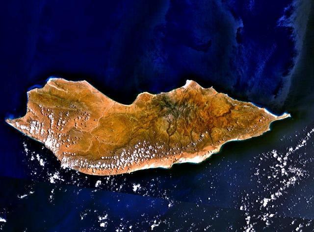 ソコトラ島-画像