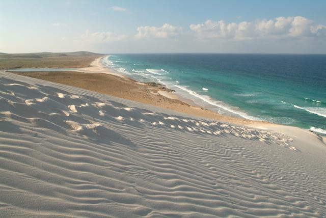 ソコトラ島-砂浜