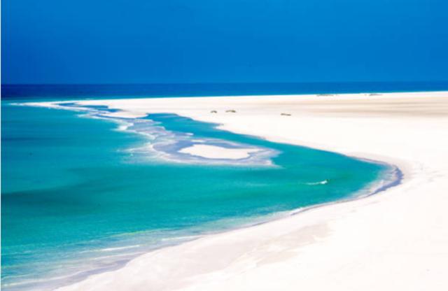 ソコトラ島-海